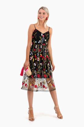 Shoshanna Honoria Dress