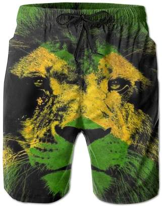 2091b9fc7f Jamaica Flag Swim Trunks Best Picture Of Imagesco