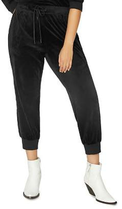 Sanctuary Curve Velour Jogger Track Pants