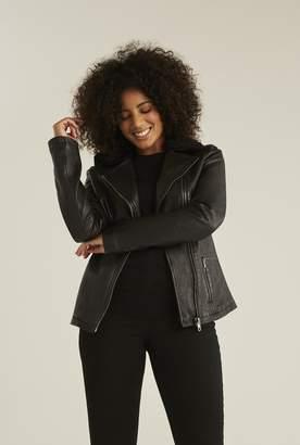 Long Tall Sally Detachable Borg Collar Leather Jacket