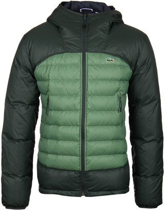 5e192e0844d2cd Lacoste Forest Green Hooded Down Jacket