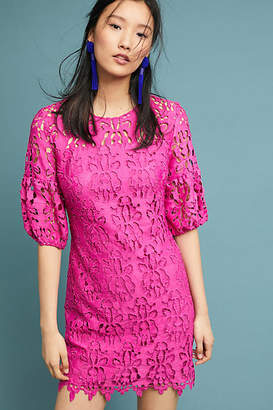 Shoshanna Amelia Lace Dress