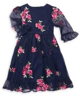 Little Girl's Sheer-Sleeve Embroidered Dress