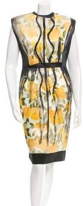 Lanvin Rose Print Dress