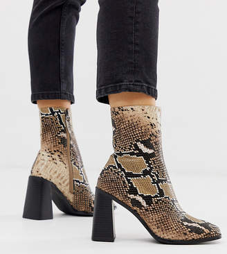Raid Wide Fit RAID Wide Fit Ziva natural snake heeled ankle boots