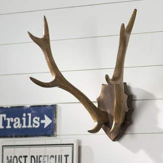 Birch Lane Wood Antler Mount Wall Dcor