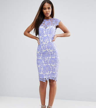 Paper Dolls Tall Allover Lace Pencil Dress With Plunge Back