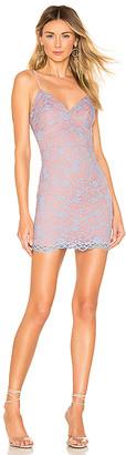 superdown Stephanie Lace Mini Dress