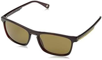 Ted Baker Sunglasses Men's Cole Sunglasses