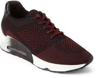 Ash Barolo & Black Lucky Knit Sneakers