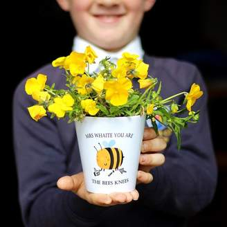 Bees Knees Jack Spratt You Are The Teacher Plant Pot