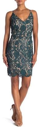 Minuet Floral Lace Mini Dress
