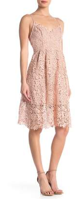 ASTR the Label Lace A-Line Dress