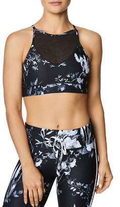 Betsey Johnson Mesh-Inset Floral Sports Bra