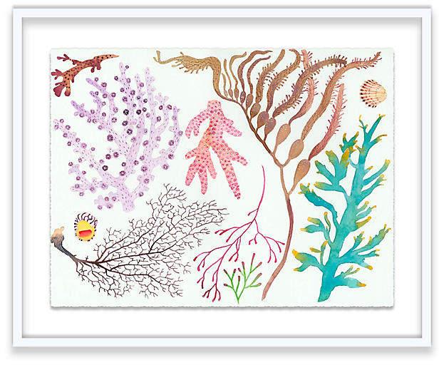 Coral - Gabby Malpas - 24