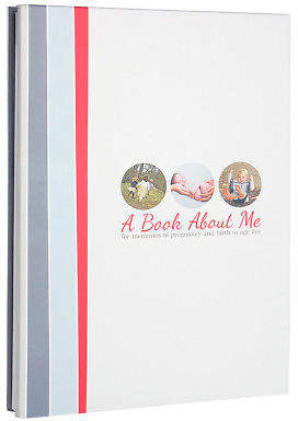 NEW Milestone Press A Book About Me