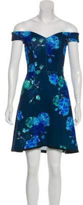 Pinko Print Evening Dress