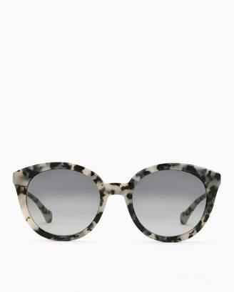 Splendid Sonix Holland Tortoise Sunglasses