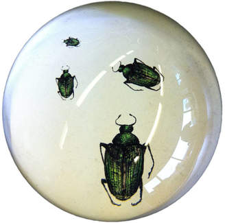 Natural History - The Origin of Style Beetles Crawling Paperweight