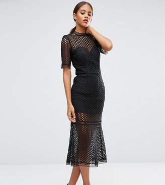 Jarlo Tall Cutwork Lace Overlay Midi Dress