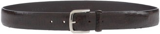 Orciani Belts - Item 46554271PD