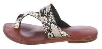 Tropez Alexandra Knight St. Snakeskin Flat Sandals