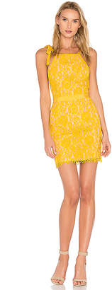Endless Rose Tied Strap Lace Mini Dress in Yellow $101 thestylecure.com