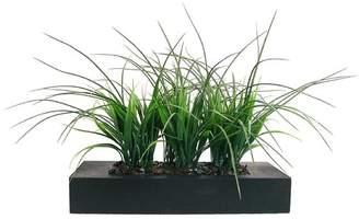 Wildon Home Grass in Rectangular Planter I