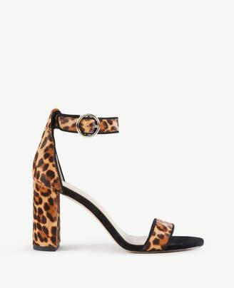 Ann Taylor Leannette Leopard Print Haircalf Block Heel Sandals