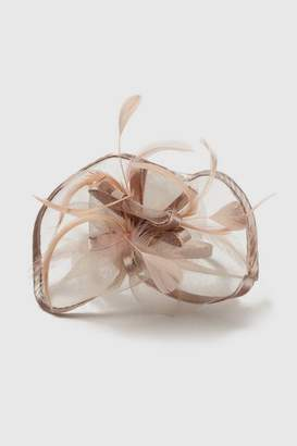 Wallis Pale Pink Satin Loop Fascinator