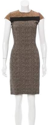Fendi Ponyhair-Accented Cheetah Print Dress
