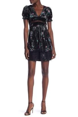 Taylor & Sage Short Sleeve Velvet Print Dress