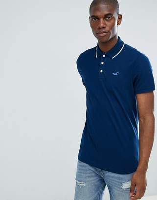Hollister tipped pique polo seagull logo slim fit in navy