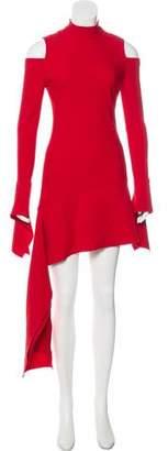 Alexis Asymmetrical Mini Dress