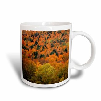 Walter 3drose 3dRose View of autumn forest, Vermont, USA - US46 WBI0013 Bibikow, Ceramic Mug, 15-ounce