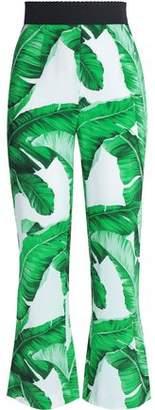 Dolce & Gabbana Printed Crepe Kick-Flare Pants