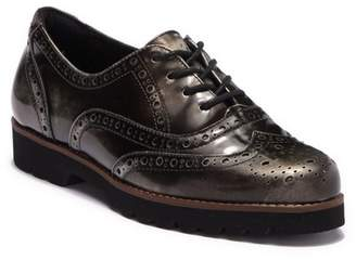 Earthies Santana Wingtip Leather Oxford