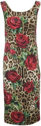 Dolce & Gabbana Leopard Rose Dress