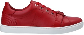 Dolce & Gabbana Low-tops & sneakers - Item 11489110EP