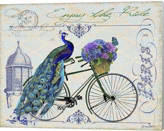 Metaverse Peacock On Bicylce I By Jean Plout Canvas Art