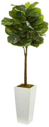 Corrigan Studio 4' Fiddle Leaf Boxwood Topiary in Tower Planter