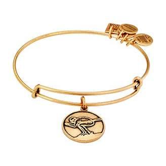 "Alex and Ani Team USA Winter"" Skiing Expandable Wire Rafaelian Gold-Tone Bangle Bracelet"