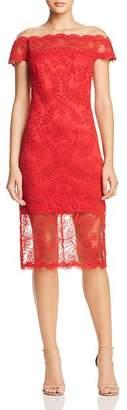 Tadashi Shoji Illusion Lace Dress