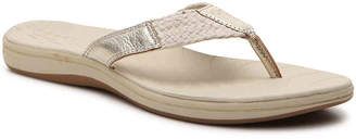 Sperry Seabrook Swell Sandal - Women's