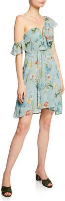 Astr Libby Floral One-Shoulder Dress
