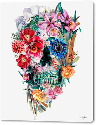 Curioos Momemto Mori VI (Acrylic Glass Print)