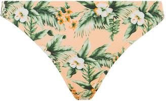 Oasis Floral Bikini Bottom