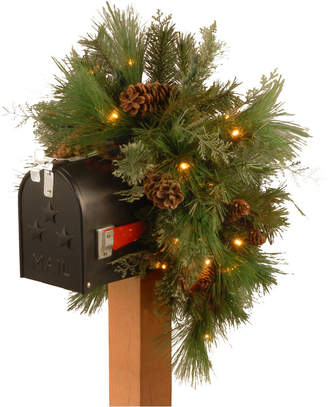 """National Tree 36"""" Decorative Collection White Pine Mailbox Swag with 63 Soft White and Red Led Battery Operated Lights"""