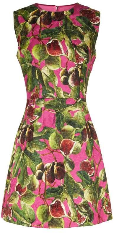 Fig Print Dress
