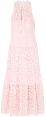 Temperley London Lunar Guipure Lace And Plissé Cotton-blend Dress - Pink